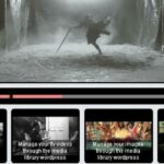 Easy-to-Use Video Plugins for WordPress